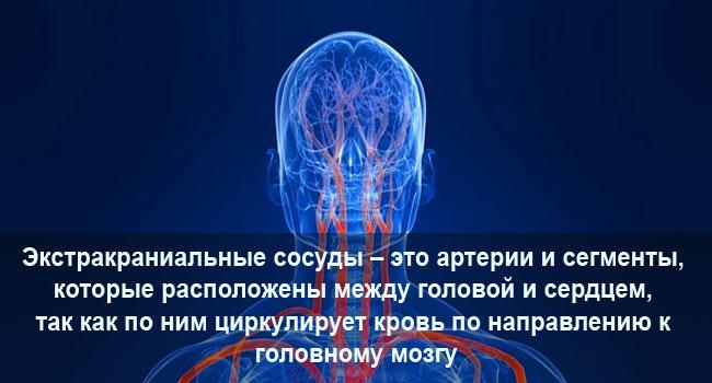 Экстракраниальные сосуды головного мозга